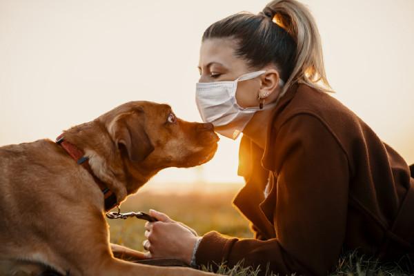 Salud con mascotas